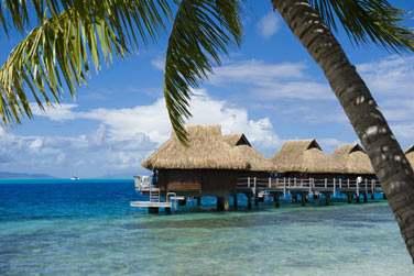 Vous séjournez au plus près du lagon, dans le décor paradisiaque de l'île de l'amour, Bora Bora...