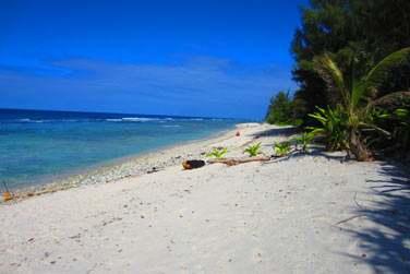 Regardez les plages , elles sont désertes et sauvages ...