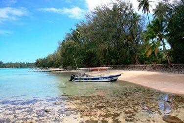Moorea est une île riche en découvertes