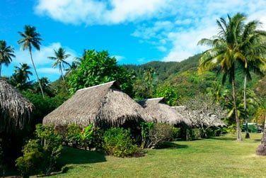 Les chambres sont réparties dans un beau jardin tropical ou en bord de mer