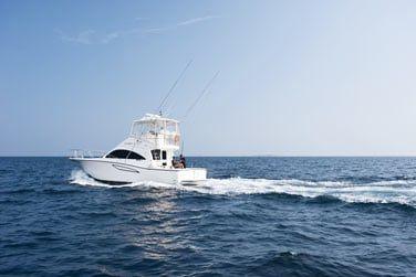 Partez en mer pour une session de pêche...