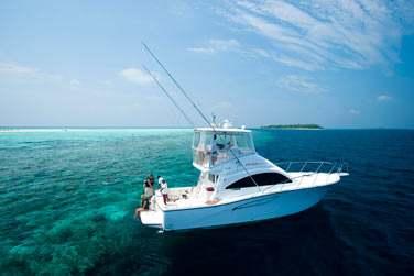 Aventurez-vous autour de l'hôtel, près de la barrière de corail et découvrez une faune et une flore sous-marine incroyable