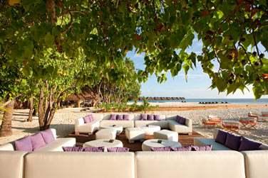 Ici, au Manta Bar, l'atmosphère est vivante, chaleureuse et tropicale.
