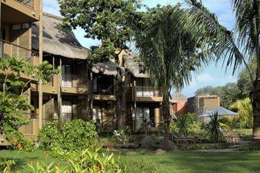 Au coeur du jardin tropical, découvrez les chambres de l'hôtel