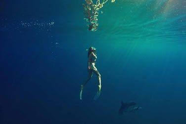 Et nager avec eux !