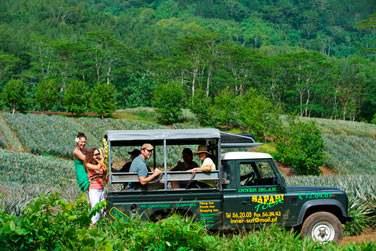 Explorez l'environnement exceptionnel de l'île...