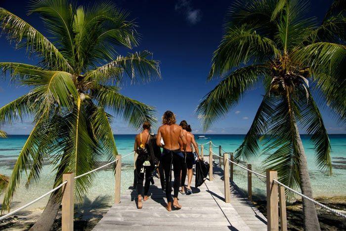 Combiné 5 îles - Passion Plongée + Extension Australes