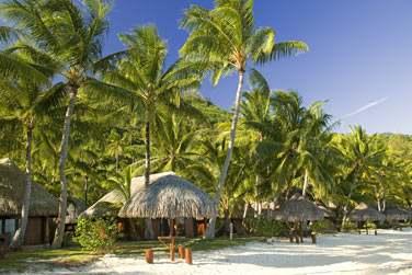 Les bungalows sont dissiminés dans les jardins , sur la plage ou encore sur pilotis