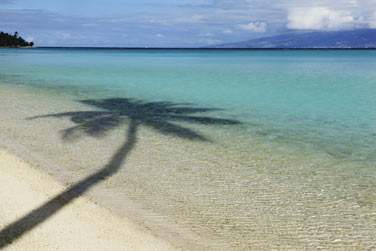 Inévitablement, l'hôtel est situé sur la plus belle plage de Moorea