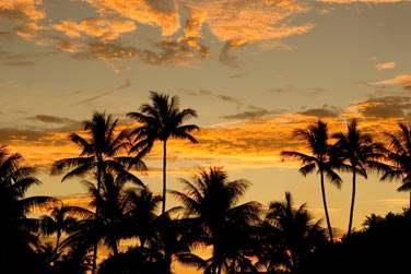 et profitez .. du coucher de soleil sous les cocotiers !