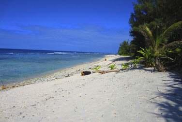 Bordée par un beau lagon turquoise et une végétation luxuriante...