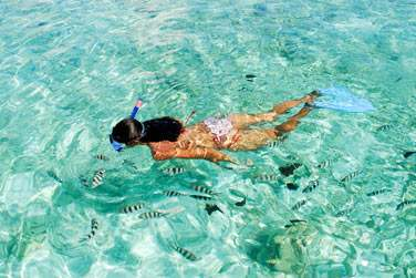 Activité plongée, Seychelles