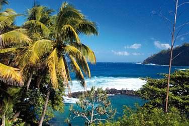 Paysage de la Réunion : végétation tropicale, falaises abruptes tombant dans la mer...