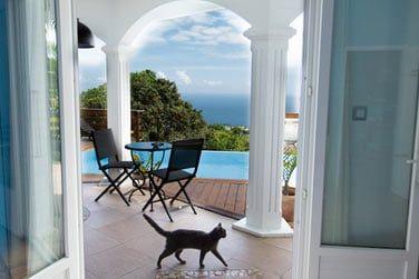 La terrasse avec piscine de la chambre Océane