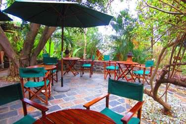 La terrasse enfouie dans la végétation du restaurant le Jardin des Orchidées