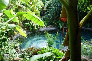 Le must du Lodge Roche Tamarin ? Le Spa Body Harmonie