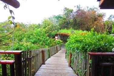 Construit en totale harmonie avec la nature avec du bois et des pierres naturelles, le Lodge est très chaleureux