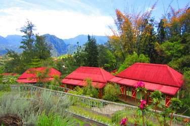 Bienvenue à l'hôtel Le Jardin d'Héva, situé sur les hauteurs du village d'Hell-Bourg