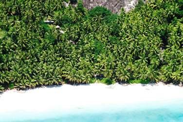 3 plages de sable blanc bordées de végétation tropicale