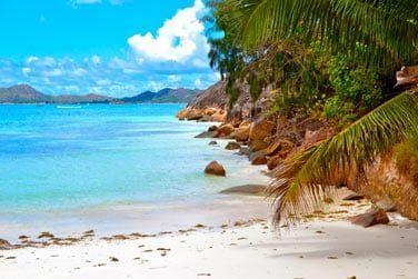 Un petit coin de paradis discret, à l'extrémité de la très belle plage de Côte d'Or