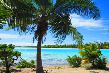 ou encore du côté de l'ile aux Récifs ..