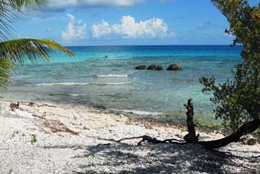 Au bord d'une petite plage de corail..