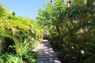 Ces petits chemins vous mènent directement aux villas...