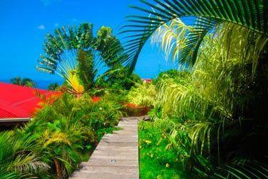 Au cœur de la végétation luxuriante ..bienvenue à la Résidence de la Cousinière