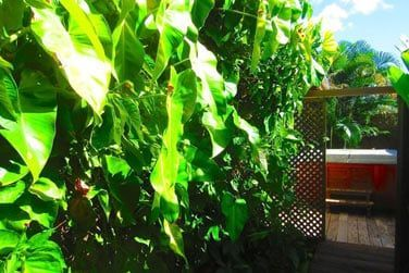 Villa Terdeho : son bain à remous privatif