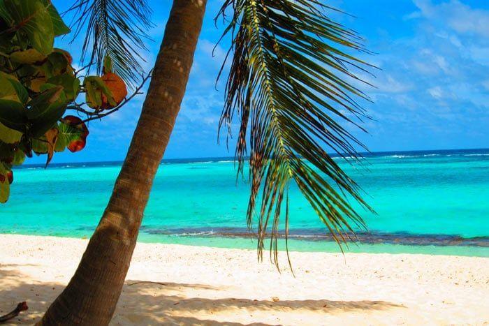 Hôtel Jericho Gites & Spa, Guadeloupe