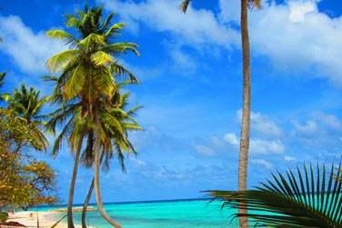 ... de profiter du bleu turquoise de l'eau, du sable fin...