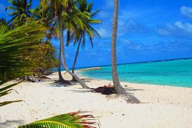 Non loin de Capesterre ! Vous vous souviendrez longtemps de votre séjour intimiste sur l'île de Marie-Galante...