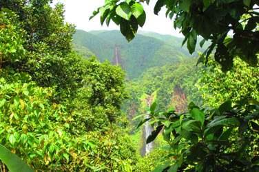 Ou encore au sud de la Basse-Terre avec les célèbres chutes du Carbet
