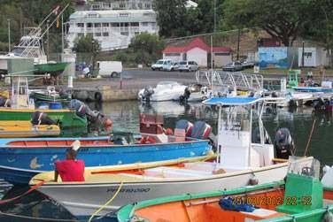 Le port de Deshaies, typique et coloré