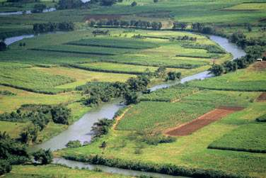La grande rivière de Goyave en Basse Terre