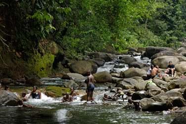 Cascades et rivières en Basse Terre