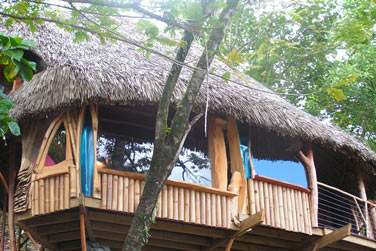 C'est au Vanira Lodge que vous séjournez...