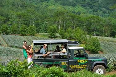 En jeep ou en 4x4 vous découvrirez l'île de Moorea comme il se doit...