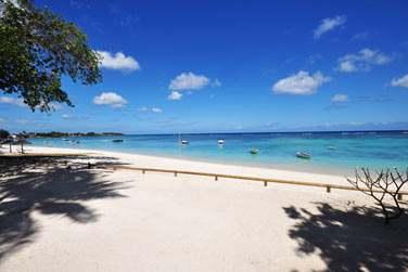 Profitez des plaisirs de la plage à l'Evaco Beach Club
