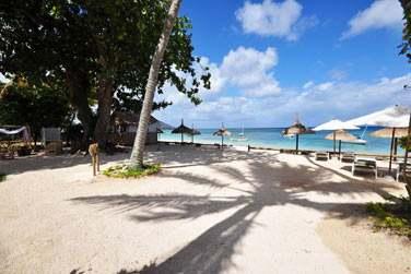 La plage est parfaitement aménagée avec parasols, transats, vestiaires...