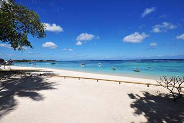 Profitez des plaisirs de la plage à l''Evaco Beach Club'