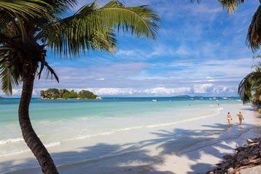 Faites de belles promenades sur cette plage magnifique...