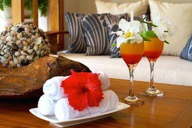 A votre arrivée, cocktails et serviettes rafraîchissantes pour vous souhaiter la bienvenue !
