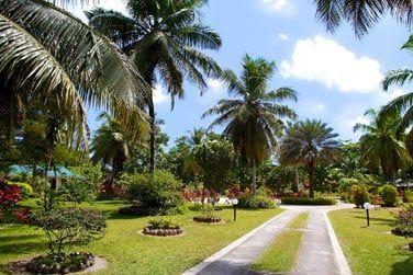 Promenez-vous au milieu de jardins luxuriants...