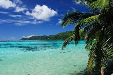 Cette belle plage de sable blanc, calme et protégée,
