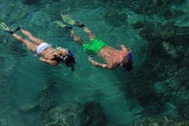 Plongée avec masque et tuba, à la découverte de la faune et flore aquatique
