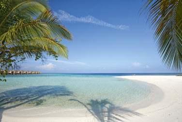 Au coeur de l'atoll d'Ari, encore totalement préservé...