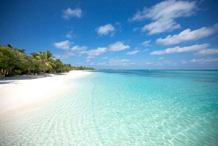... Profitez de la tranquillité des lieux et des couleurs du lagon...