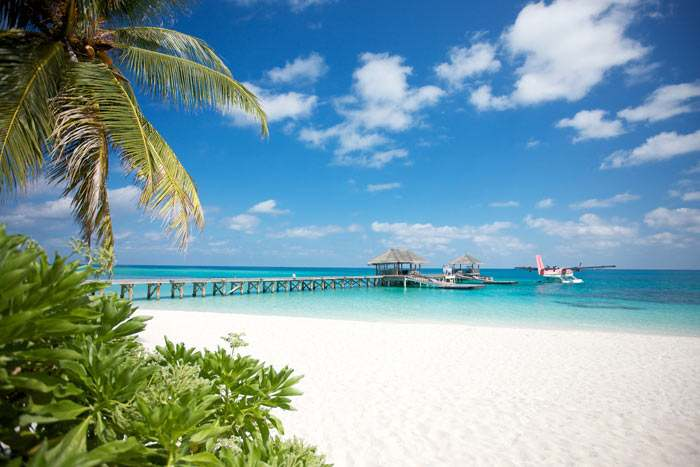 S jour plong e aux maldives h tel lux south ari atoll for Chambre 13 tahiti plage