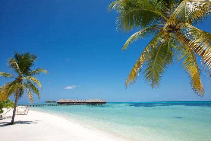 Sur les longues plages de sable blanc...
